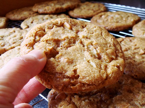 Butterscotch Coconut Cookies: Ginormous