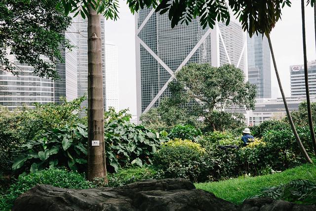 essay_hong-kong_street_kodak-porta-010.jpg