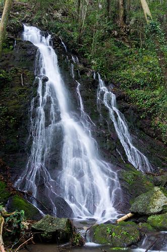 観音の滝 2012.4.12