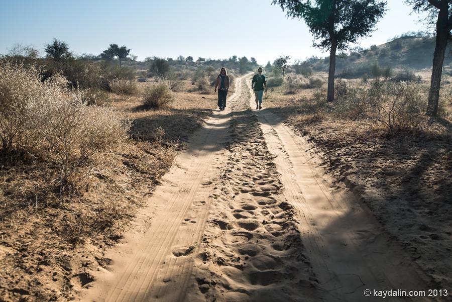 Пешком по пустыне. Индия. Биканер