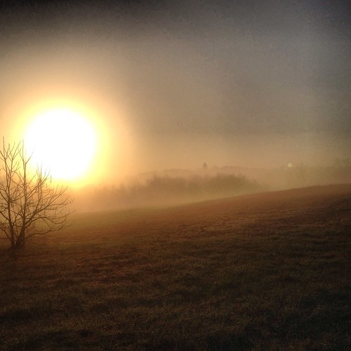morning sky sun moon mist field fog sunrise golden spring run