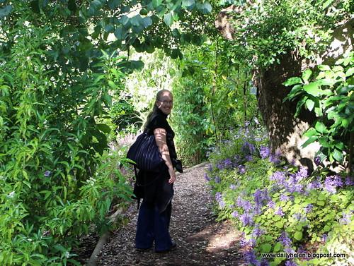 dailyhelen_woodland by dailyhelen
