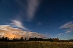 Sunkhaze Meadows Under the Stars; Benton, Maine
