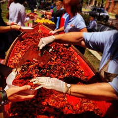 is it Crawfest 2014 yet? #crawfest #onlyattulane #onlyinneworleans