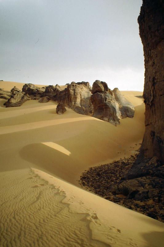 اجمل صحراء في العالم  - صفحة 2 8672999316_803d9d2cfd_c