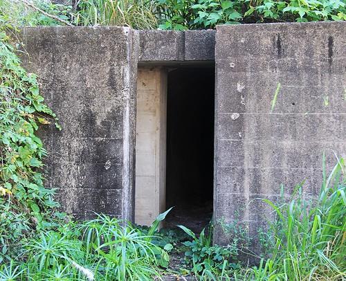 WWII Bunker 1