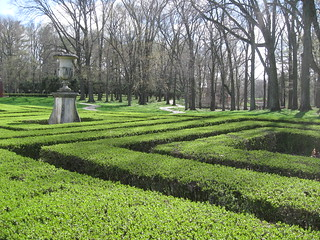 Boxwood Maze with Trees