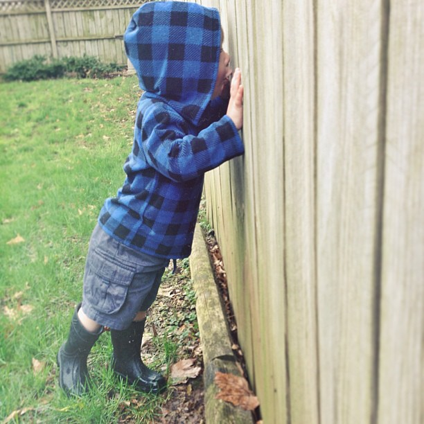 Peeking through fence holes, looking for treasures. #childhood #fmsphotoaday