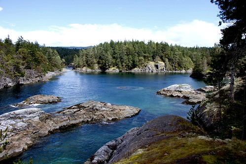 nature scenery shoreline sealife kayaking sechelt suncoastcentral