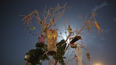 The Shoe tree at night