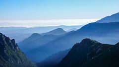 Dolina Rybiego Potoku, Gorce i Beskidy w porannej mgle. Ze szlaku przez Świstówkę