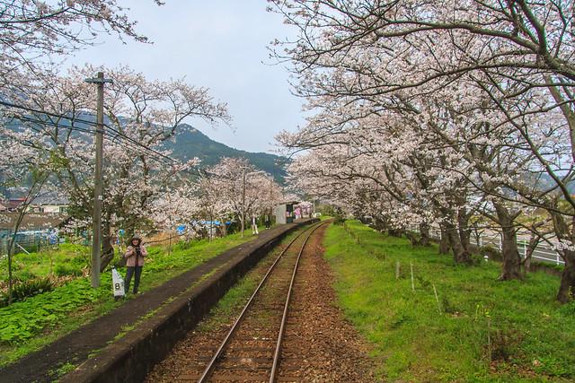 20130323-MatsuuraRailway-13
