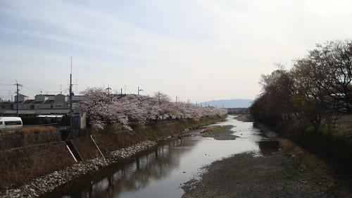 2013/04 松ヶ崎橋