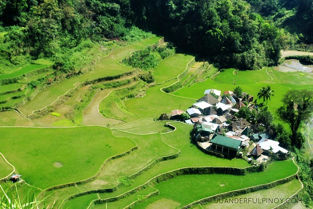 8629853689 6a37b72b52 z [UNESCO WORLD HERITAGE SITE] STUNNING BANGAAN RICE TERRACES