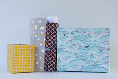 cereal box organizers1 (1 of 1)