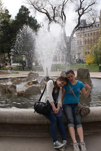 Sassafras at the Rathauspark