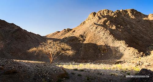Israel - Neguev Desert - Nahal Shlomo 01