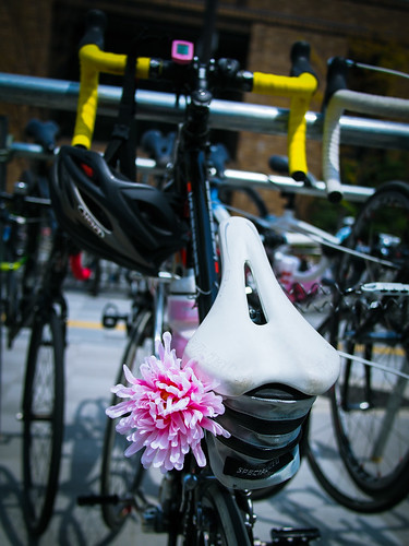 a bike with a pink flower
