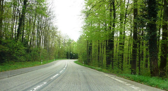 On the Road from Langendorf to Feldbrunnen 7