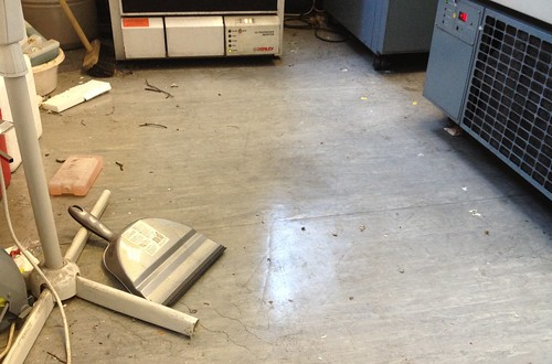 Post-Pigeon Lab Carnage