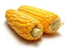 Kukuřice a pohanka - kulinářské starožitnosti