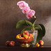 Orchids In July by panga_ua