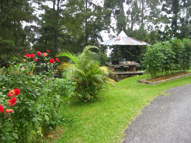 Taiping Maxwell Hill IMG_5905