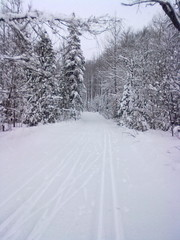 Winter wonderland at Highlands Nordic