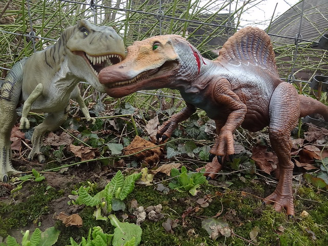 8623928513 bf5de2f64b z jpgJurassic Park Toys Spinosaurus Vs Trex