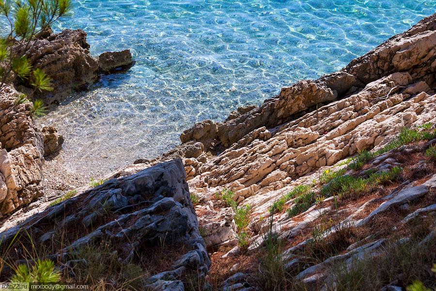 07-Wild-Makarska