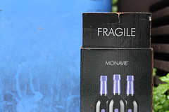 Fragile by foundimagination
