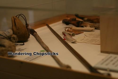 4 Icelandic Phallological Museum - Reykjavik - Iceland 18