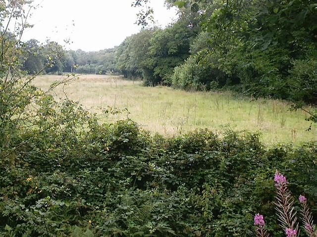 Ashburnham Furnace Pond