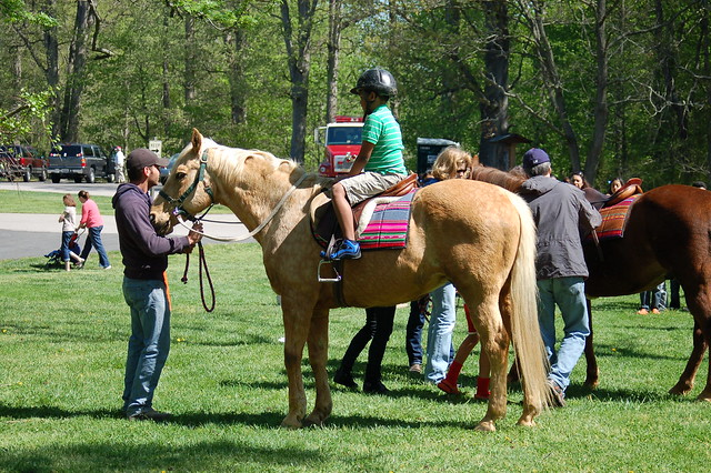 Pony rides - The 2014 Eagle Festival at Mason Neck State Park