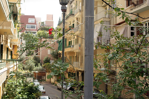 Street in Beirut