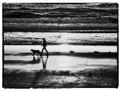 ocean light people blackandwhite dog man art beach water weather sunrise walking print photography waves shadows contemporaryart fineart photograph fineartphotography jacksonvilleflorida worsham nellievin