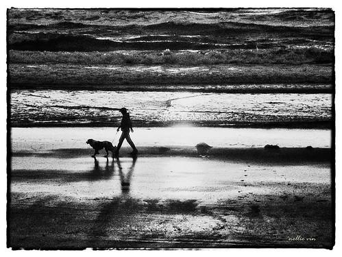 ocean light people blackandwhite dog man art beach water weather sunrise walking print photography waves shadows contemporaryart fineart photograph fineartphotography jacksonvilleflorida worsham nellievin