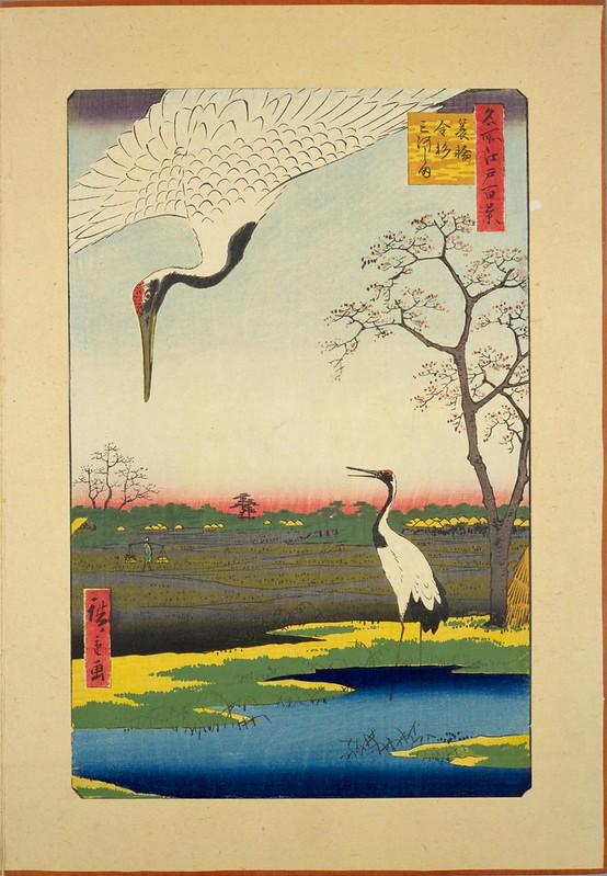 Minowa, Kanasugi and Mikawashima