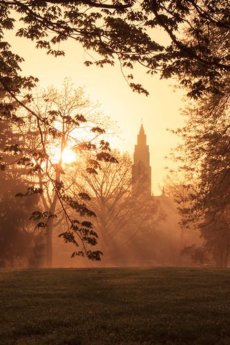 trees tree church fog sunrise dawn stlouis foggy missouri backlit saintlouis francispark saintgabrielthearchangelcatholicchurch