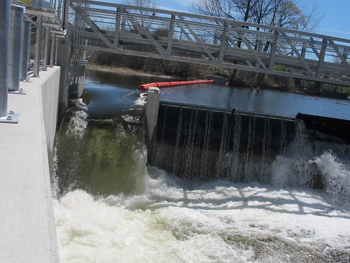 Fish ladder 7