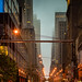 Small photo of New York - Urban Canyon