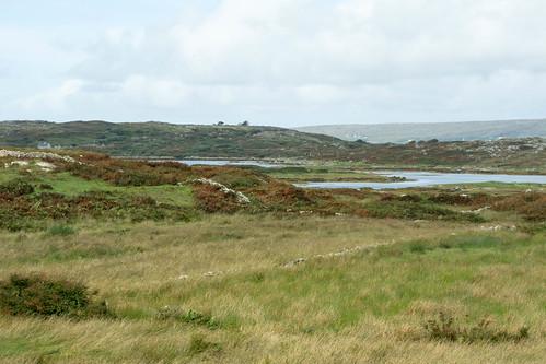 A view of Inishbarra