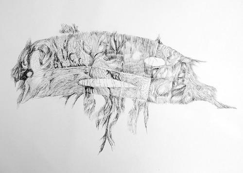 Nono desenho a tinta da China, Singapura, 2013. O viajante by fernanda garrido