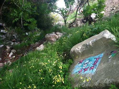 Calavera con flores Albany Bulb