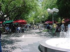 Paseo Peatonal del Vino Actividades 2013