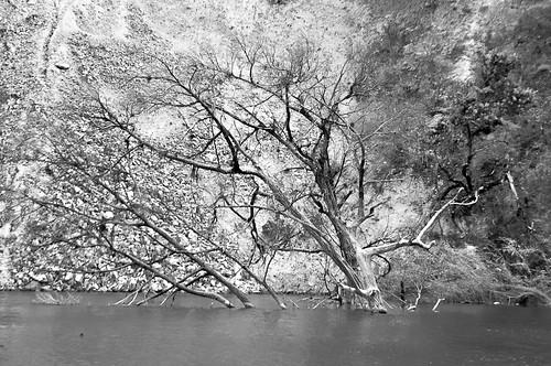 Laguna encantada (19)