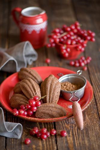 Chocolate madeleines (365)