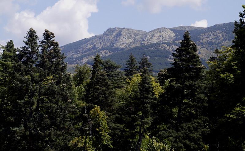 3. Valle de Valsaín, en la Sierra de Guadarrama. Autor, FDV