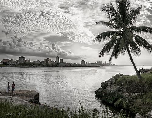 Havana bay by Rey Cuba