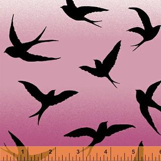 1 bird 3